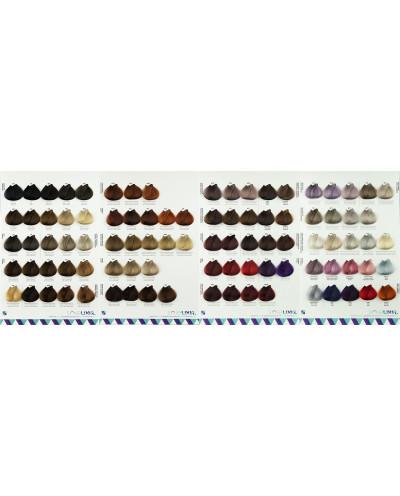 Color Chart Soielixir - 93...